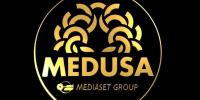 medusa_artwall